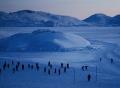 消失的格陵兰岛