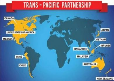 TPP来了 中国如何见