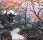 """赴日旅游""""神社风"""" 享受日本深度旅"""