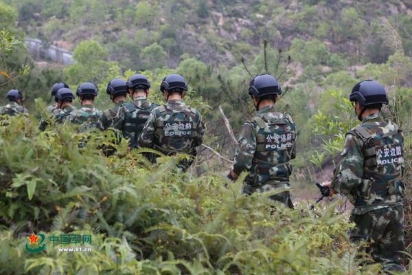 武警边防部队练习丛林作战 严酷考验打造 示范班图片