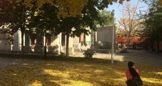 探秘京城20家深藏不露的博物馆