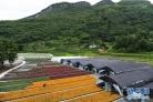 重庆武隆:花卉产业助力脱贫攻坚